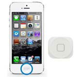 iPhone 5 - Home Button  ohne Funktion